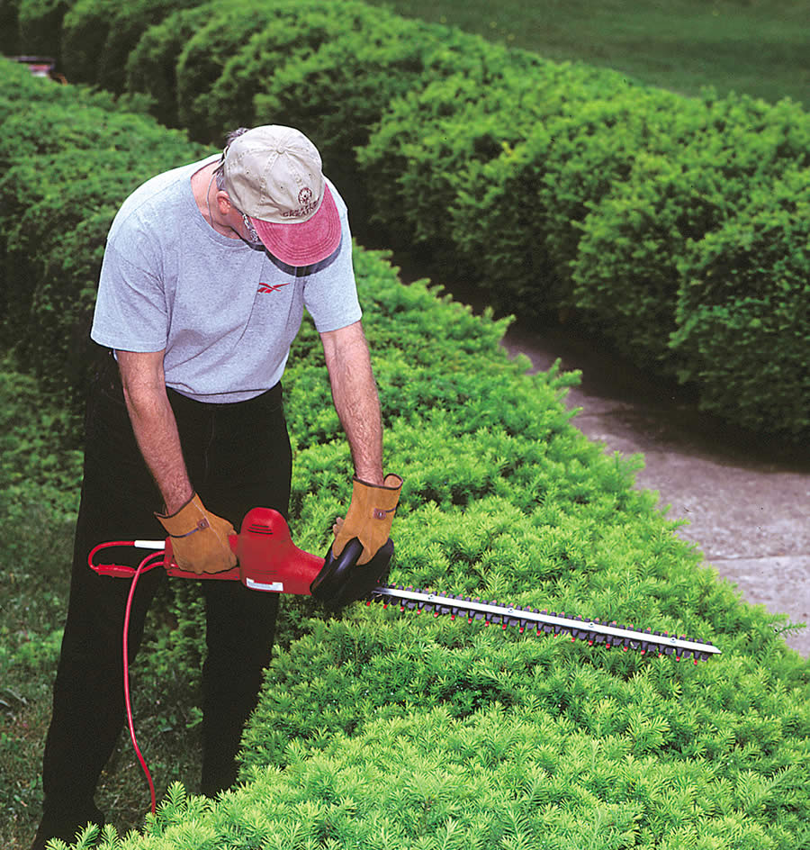 Little Wonder Electric Hedge Trimmers Offer A Lifetime Of