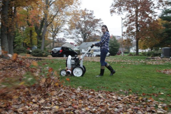 Little Wonder C5 Blower gets leaves off lawn