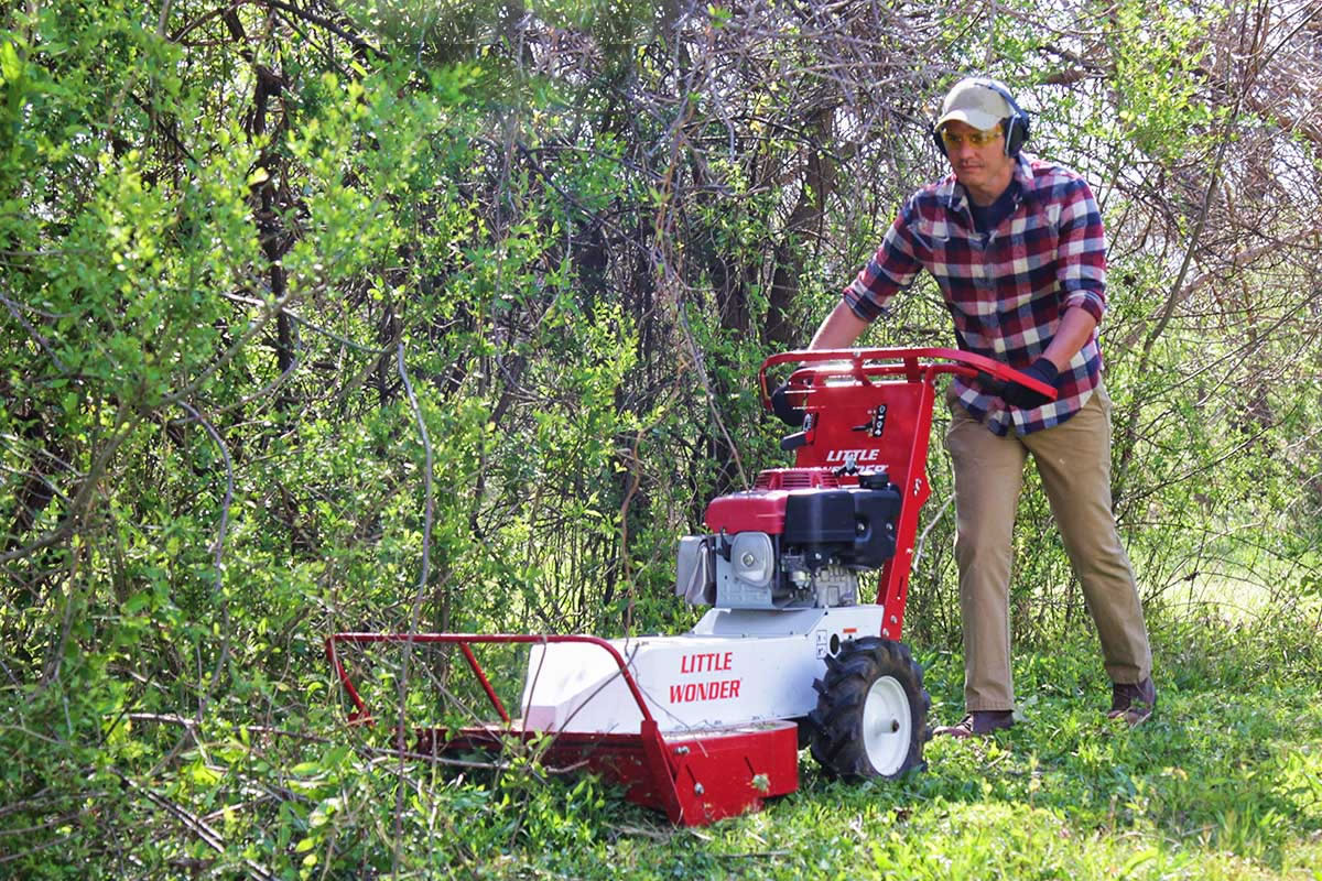 Brush cutter clearing overgrowth