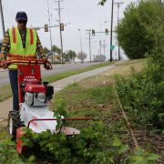 Little Wonder Brush Cutter urban use