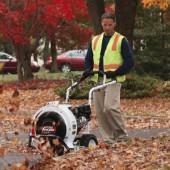 Little Wonder Walk Behind Leaf Blowers Rental