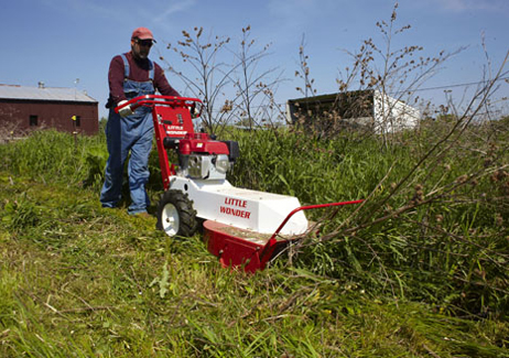 Man with Brush cutter clearing field overgrowth