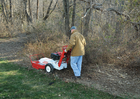 Brush cutter man clearing overgrowth